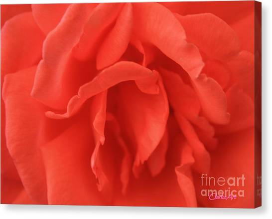 Heart Of The Rose - Red Canvas Print