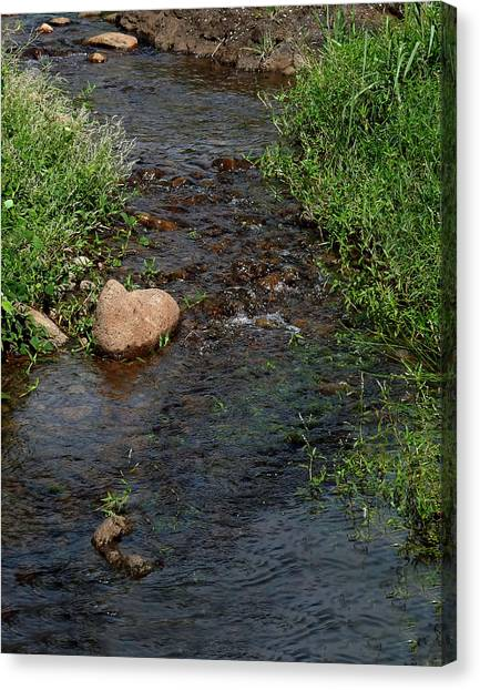 Heart Of The Stream Canvas Print