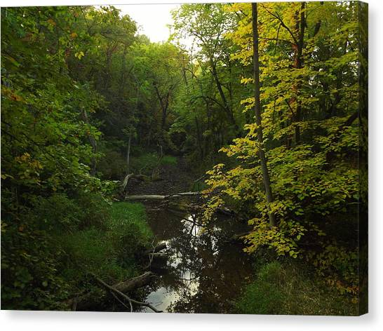 Heart Of The Woods Canvas Print