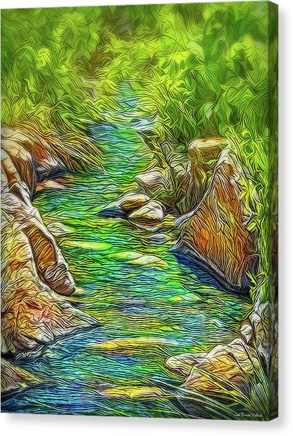Heartbeat Of A Stream Canvas Print