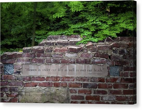 Mortar Canvas Print - Heaven Under Our Feet Wall by Tom Mc Nemar