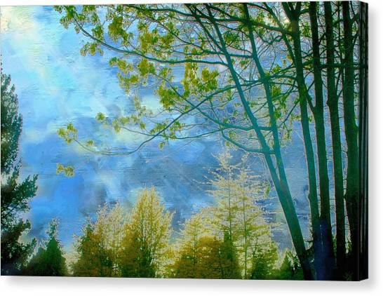 Heavenly Light II Canvas Print