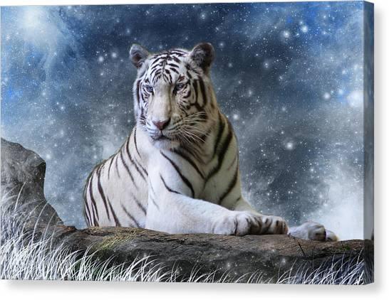 Bengals Canvas Print - Hector by Julie L Hoddinott