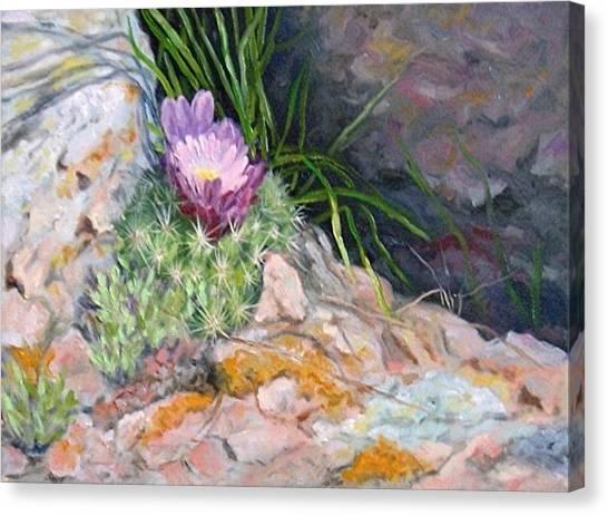 Hedgehog Cacti Canvas Print by Debra Mickelson