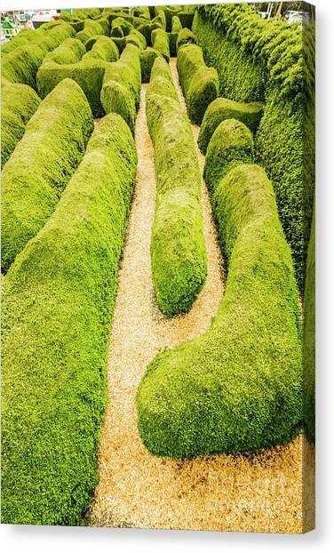 Botanical Garden Canvas Print - Hedging An Escape by Jorgo Photography - Wall Art Gallery