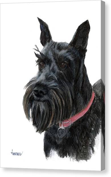 Heidi Canvas Print by Jimmie Trotter