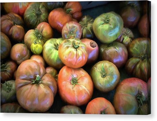 Heirloom Tomatoes Canvas Print