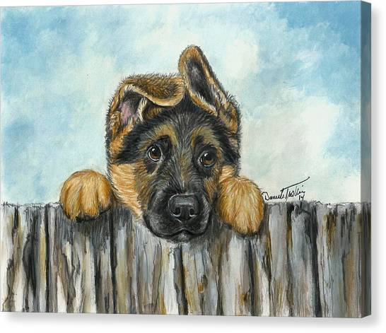 German Shepherds Canvas Print - Hello You  by Daniele Trottier