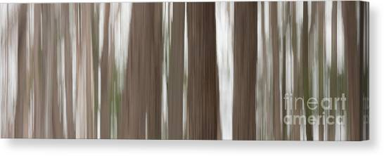 Hemlock Grove Canvas Print