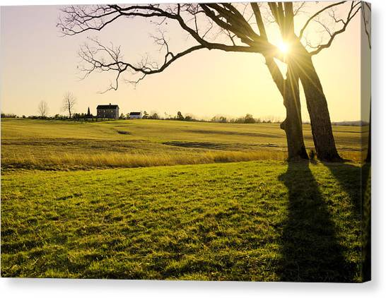 Pasture Canvas Print - Henry Hill by Chad Dutson