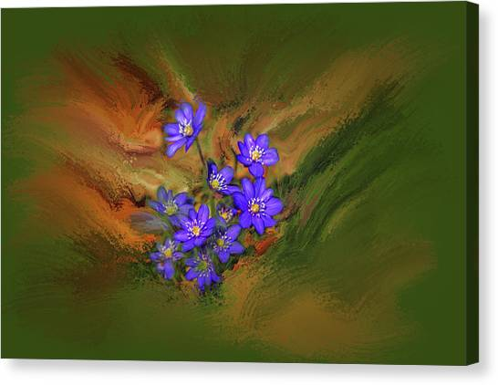 Canvas Print featuring the digital art Hepatica Nobilis Painterly #h4 by Leif Sohlman