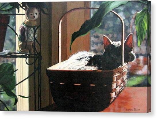 Canvas Print - Her Basket by Sandra Chase