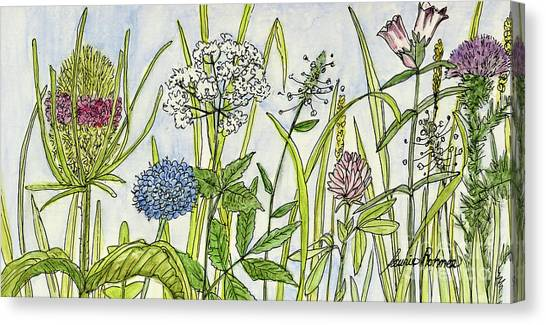 Herbs And Flowers Canvas Print