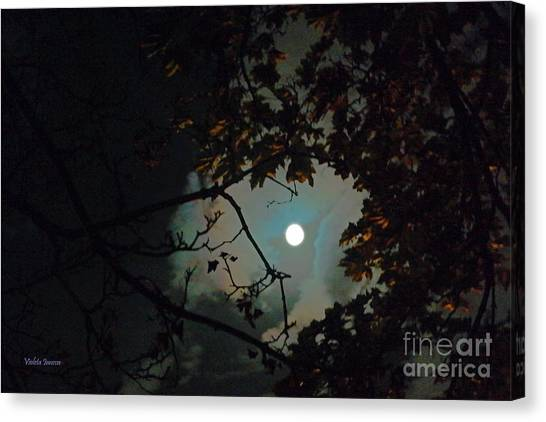 Violeta Canvas Print - Here Comes The Full Moon by Violeta Ianeva