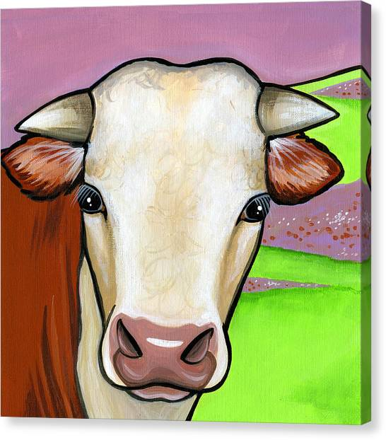 Hereford Canvas Print