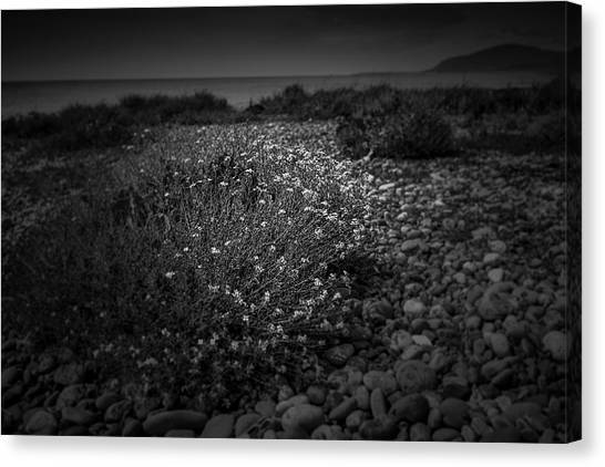 Hernsea Bay And Black Combe Canvas Print