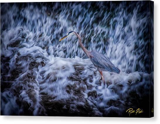 Heron Falls Canvas Print