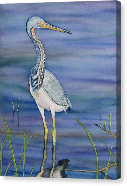 Heron Canvas Print by Sharon Farber