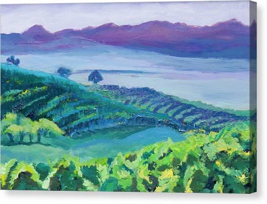Heuningland Canvas Print