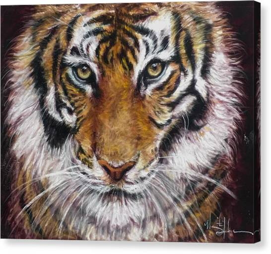 Clemson University Canvas Print - Hi There by Marguerite Anderson