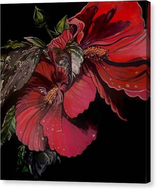 Hibiscus After The Rain Canvas Print