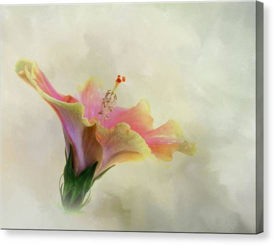 Hibiscus Art Canvas Print