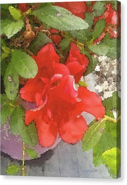 Hibiscus B Canvas Print