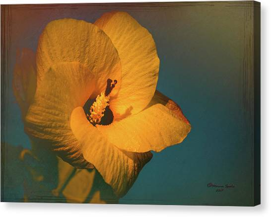 Hibiscus Canvas Print - Hibiscus by Marvin Spates