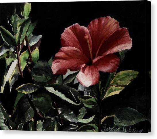 Hibiscus Canvas Print by Patricia Halstead