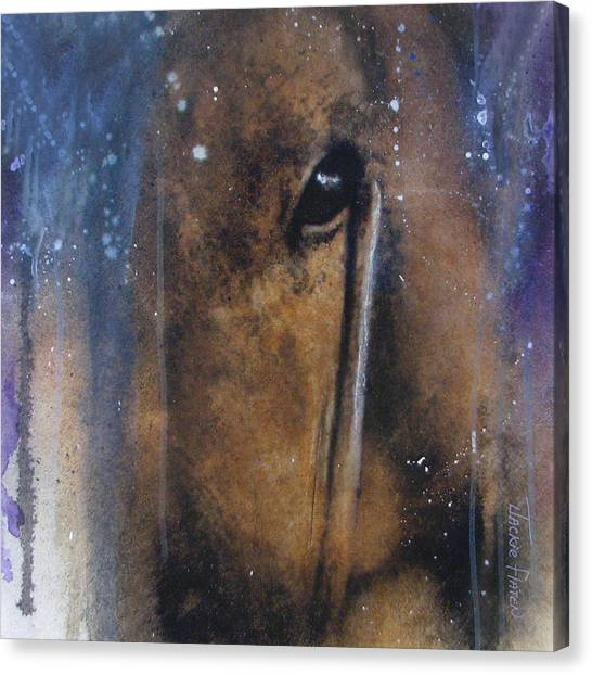 Hidden Horse Canvas Print