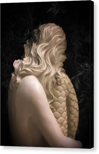 Hidden Mermaid Canvas Print
