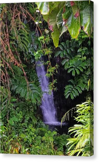 Small Hidden Waterfall  Canvas Print