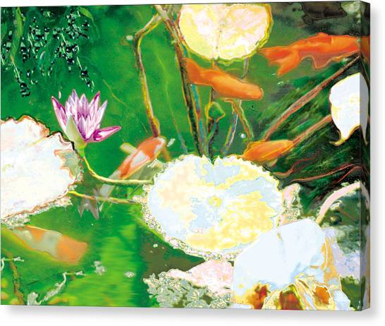 Hide And Seek Kio In The Green Pond Canvas Print by Judy Loper
