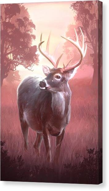 In The Wilderness Canvas Print