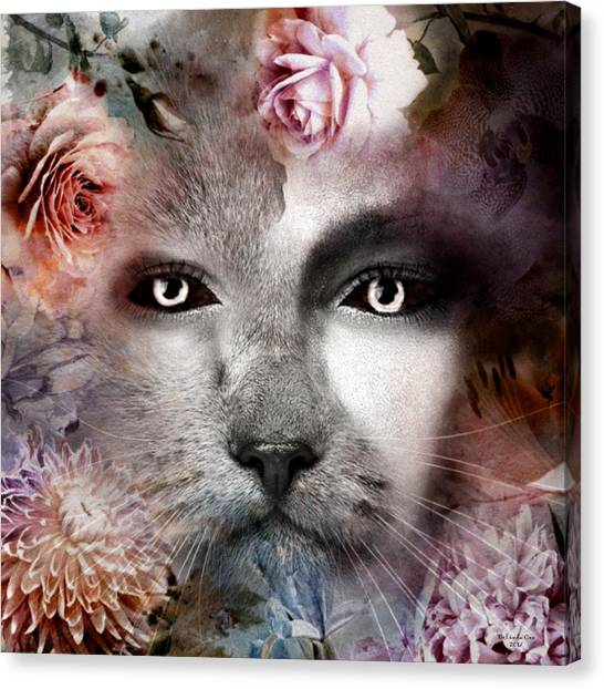 Hiding Catlady Canvas Print