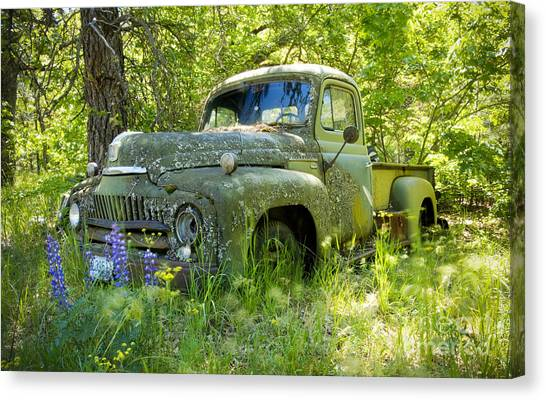 Green Camo Canvas Print - Hiding by Idaho Scenic Images Linda Lantzy