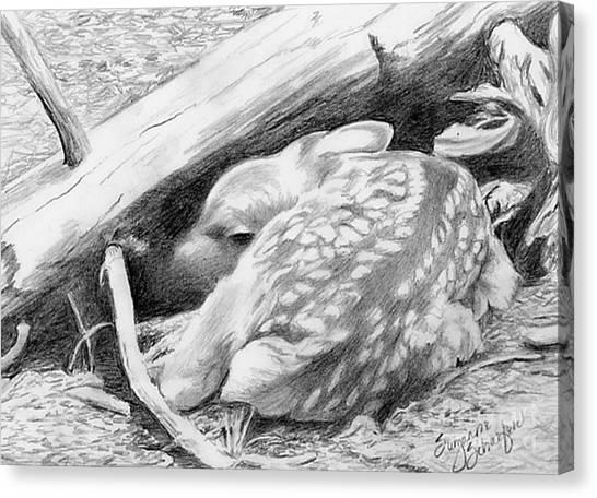 Hiding In Plain Sight - White Tail Deer Fawn Canvas Print