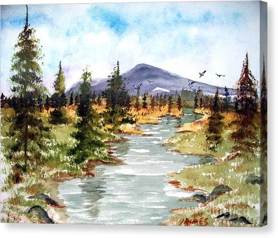 High Country Stream Canvas Print