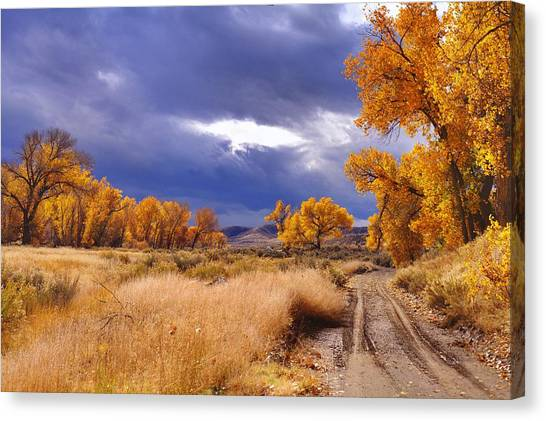 High Desert Autumn II Canvas Print by SB Sullivan