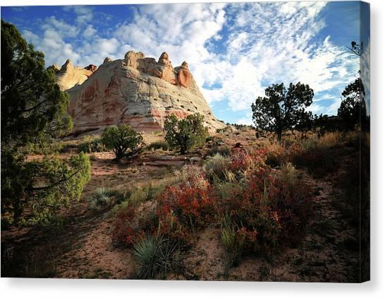 Arizona Coyotes Canvas Print - High Desert Paint by Gary Yost