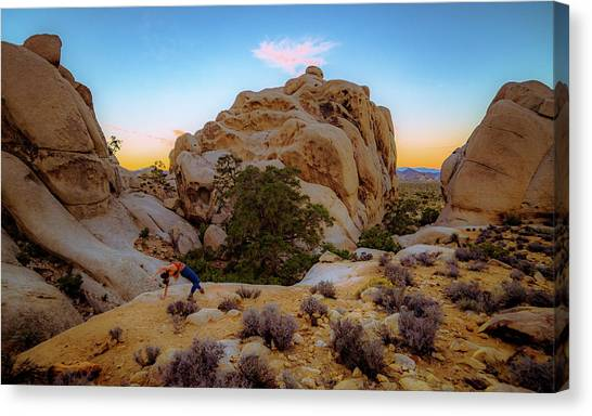 Canvas Print featuring the photograph High Desert Pose by T Brian Jones