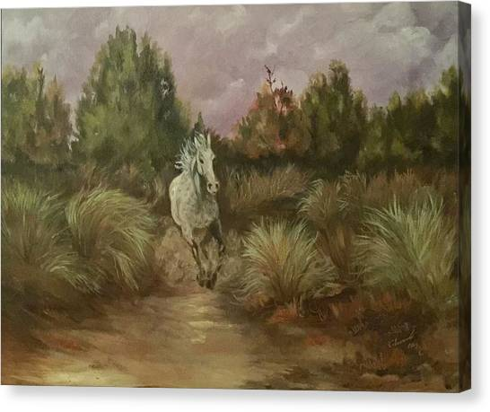 High Desert Runner Canvas Print
