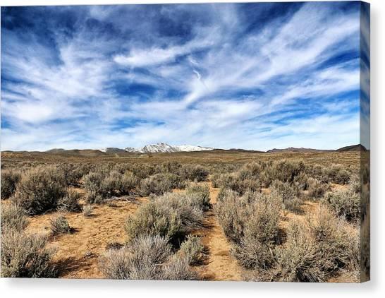 High Desert Canvas Print