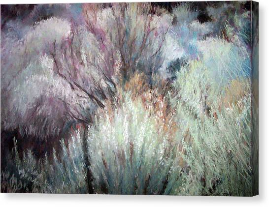 High Desert Seduction Canvas Print by Anita Stoll