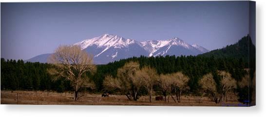 High Peaks Of Arizona Canvas Print