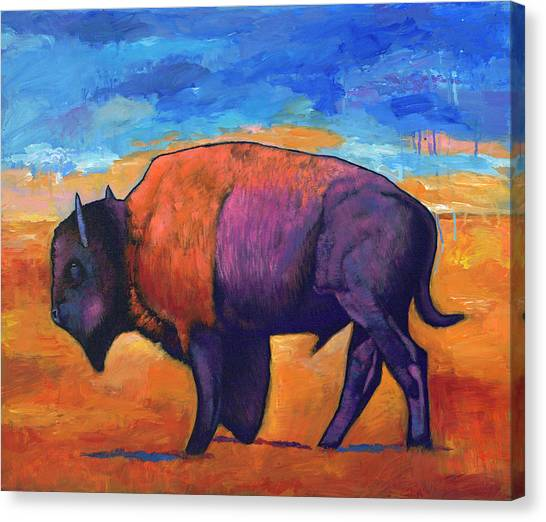 Bison Canvas Print - High Plains Drifter by Johnathan Harris