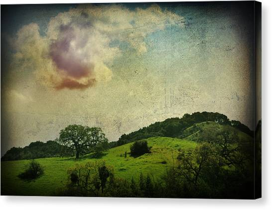 Outdoors Canvas Print - Higher Love by Laurie Search