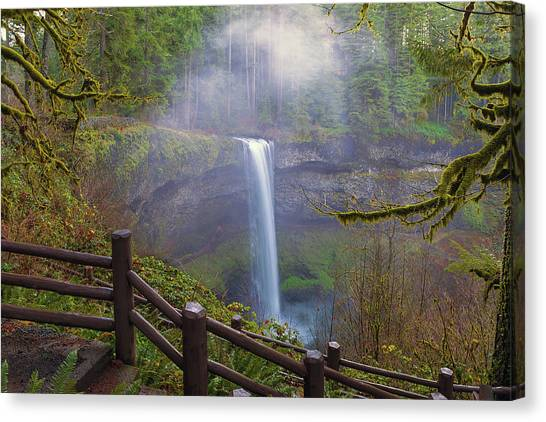 Canvas Print - Hiking Trails At Silver Falls State Park by David Gn