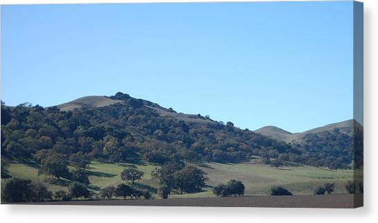 Hills Of Oak Canvas Print by Jean Booth