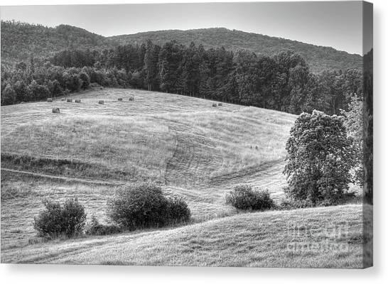 Hillside Hay Canvas Print